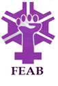 feminismo feab