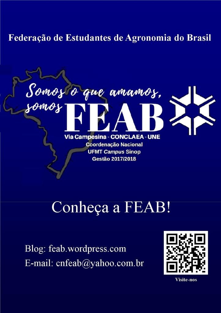 Cartaz FEAB CN Sinop