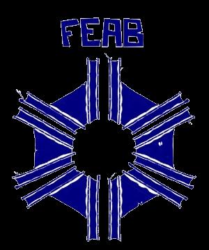 Retomada do Fórum Nacional das Executivas e Federações de Curso (FENEX)